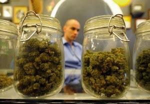 marijuana convention