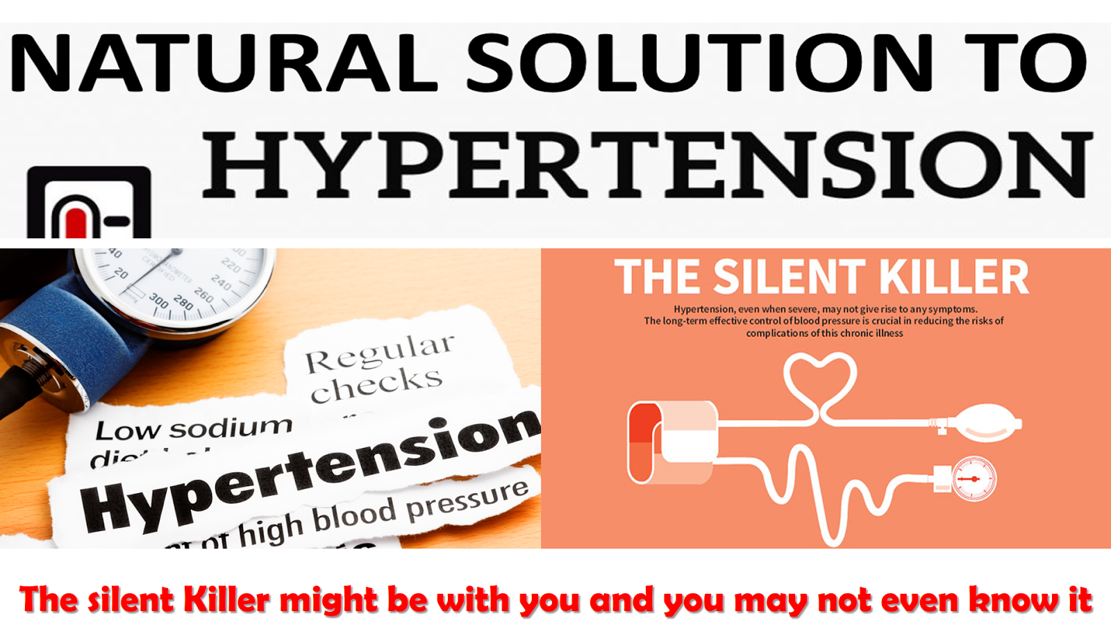 Are You Hypertensive ??  Click On The Image Below To Get A 100% Natural Solution