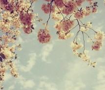"""""""Nu ma siliti sa reneg ceea ce-n vis am vazut, ceea ce vad de vis in realitate"""" Arthur Lundkwist"""