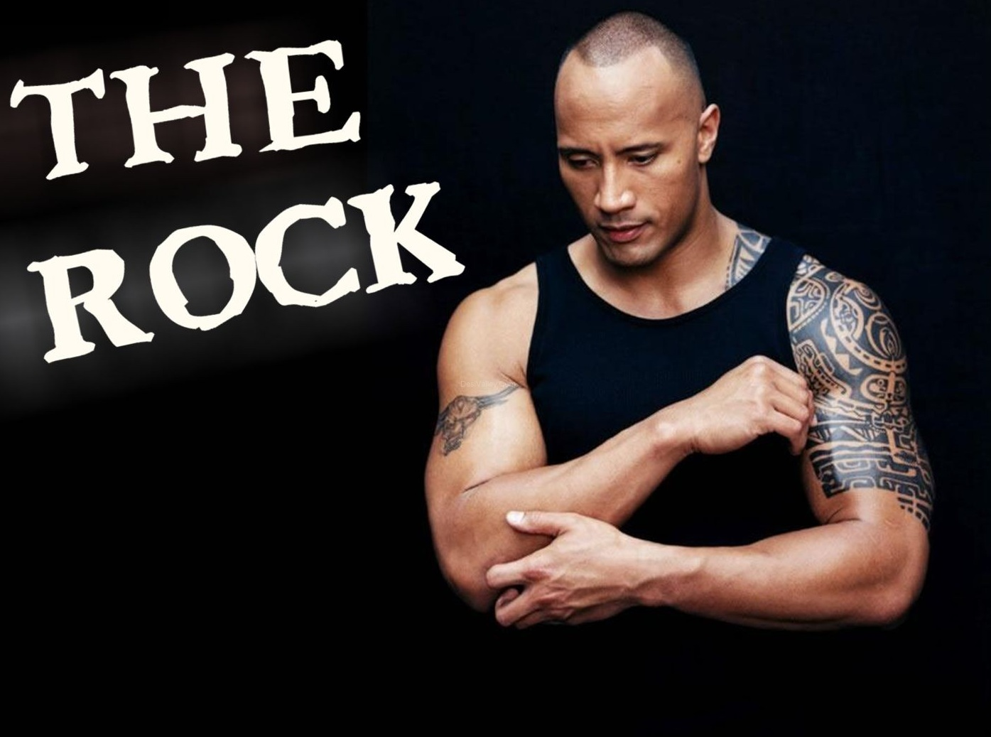 The Rock New HD Wallpapers 2012-2013 ~ All About HD Wallpapers