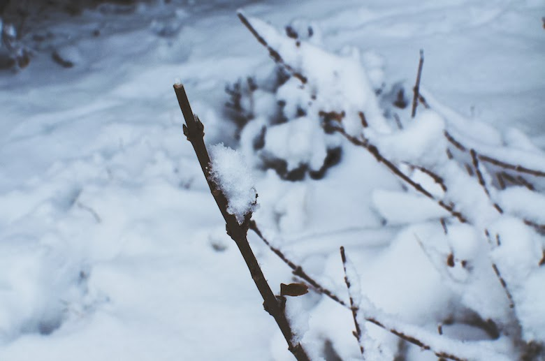 Ephraim Utah Winter
