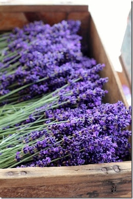 lavanda en caja de madera