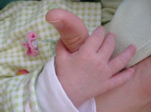baby hand wrapped around adult thumb. Stock Photo credit: labergquis