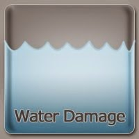 Water Damage Palm Beach FL