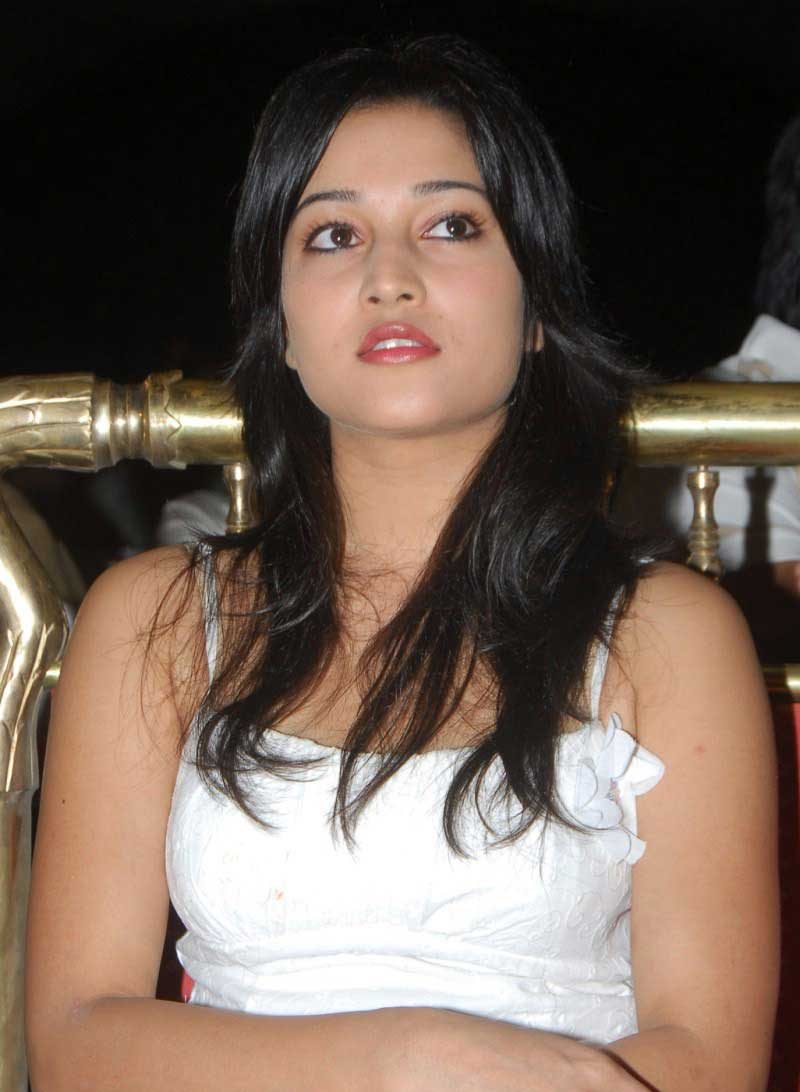 , Ritu Barmecha Hot Pics at Aha Naa Pellanta Press Meet