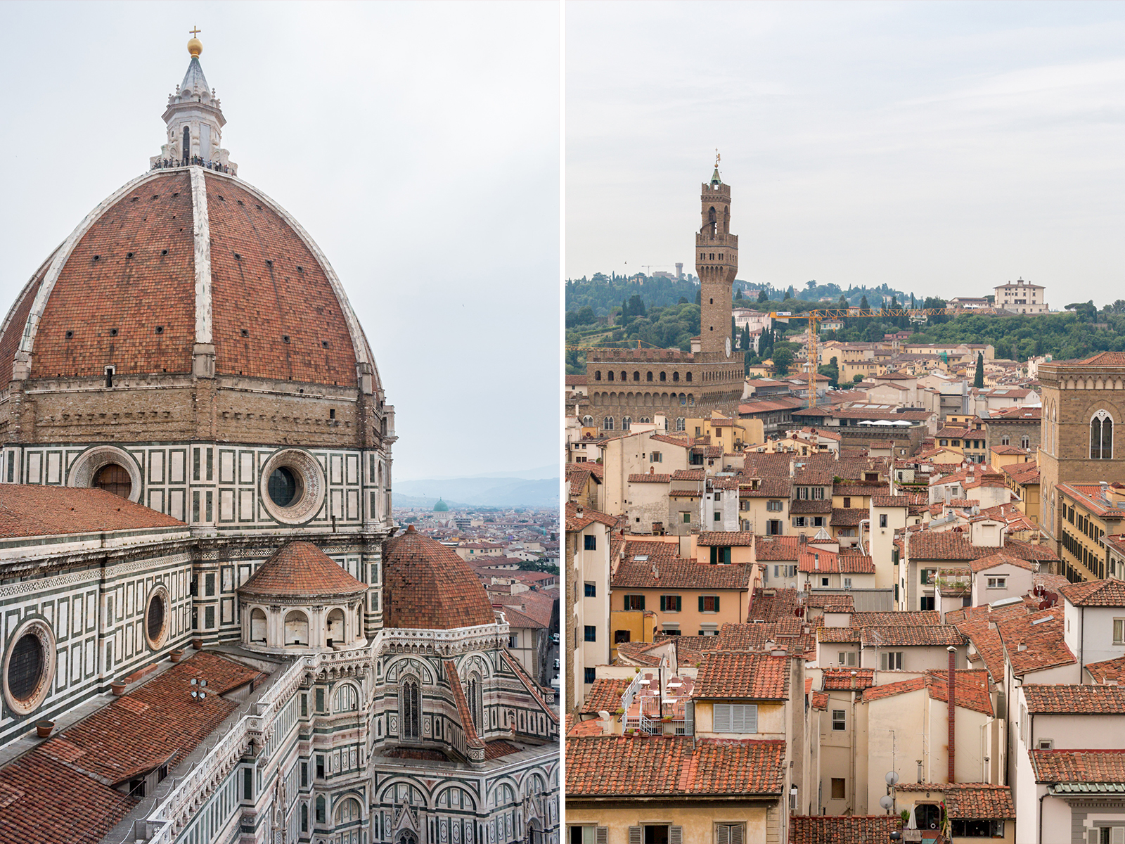 The magnificent duomo of florence journey camera for Domon florence