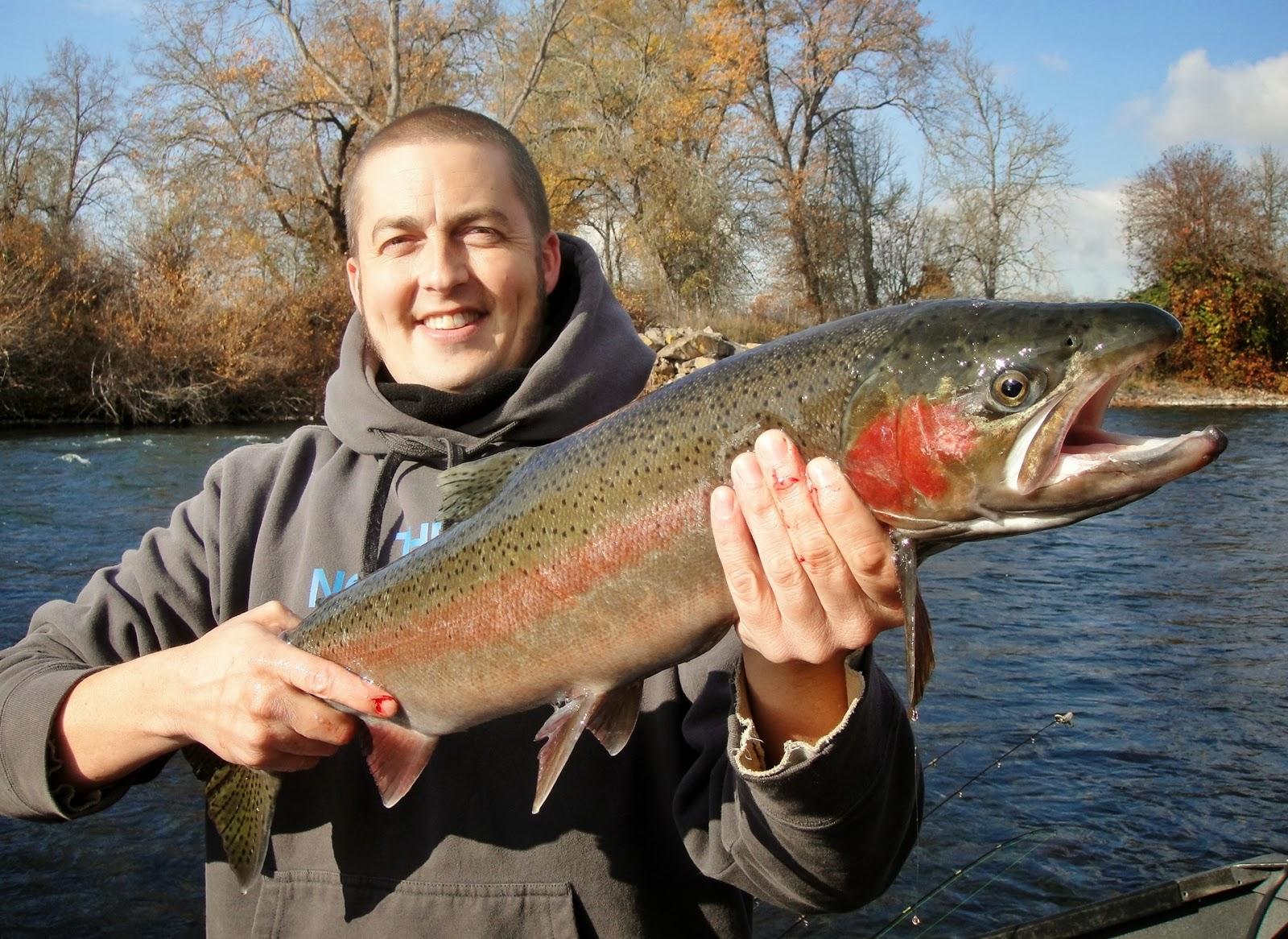 Oregon fishing trips rogue river report rogue river for Rogue river fishing report
