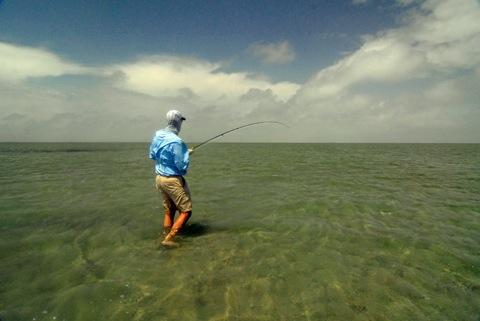 River mud dream trip photo prompt espanol edition for Fly fishing austin texas