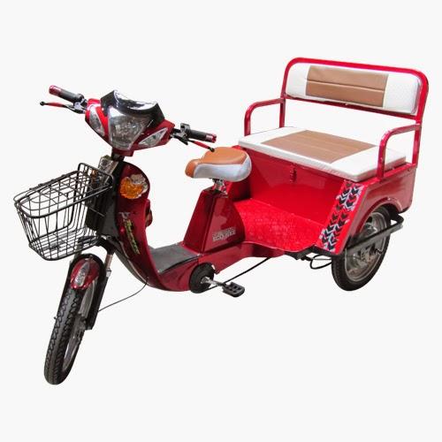 Eco Bikes Philippines Truckee P