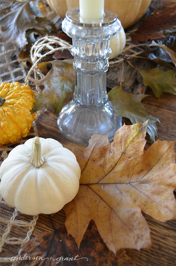 Natural Thanksgiving centerpiece featuring pumpkins, gourds, and leaves | anderson + grant