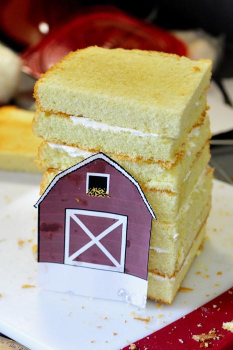 Haniela S Barn Farm Cake