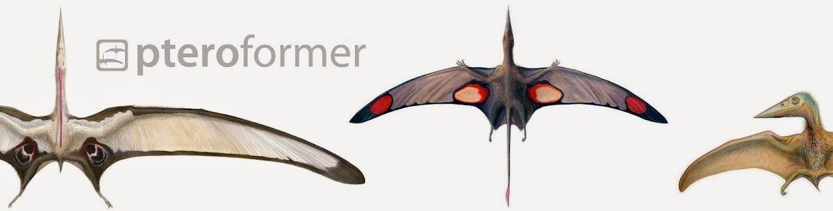 Pteroformer