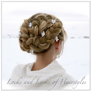 Romantic Braided Up Do