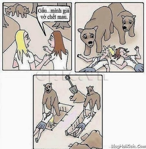 Ảnh vui nhộn về chú gấu tốt bụng