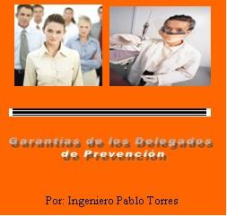 Protección Delegados de Prevención 1.