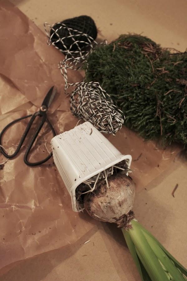 diy krukor, krukor av vaxpapper, hyacinter, adventspyssel, blommor till advent, göra egna krukor