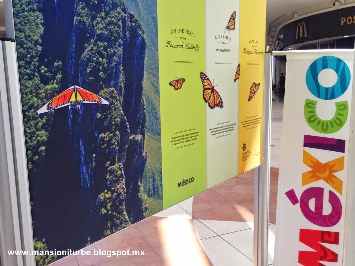 El Viaje de la Mariposa Monarca exposición fotográfica