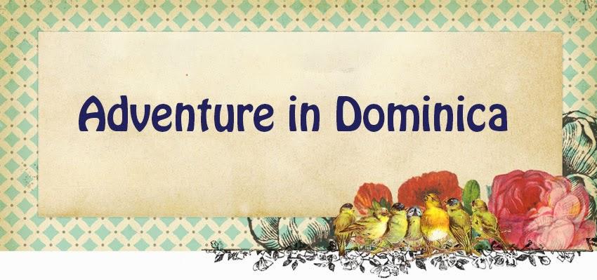 Adventure in Dominica