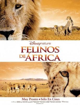 Felinos de Africa poster Felinos de Africa (2011) Español Latino