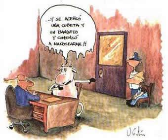Vaca en un tribunal