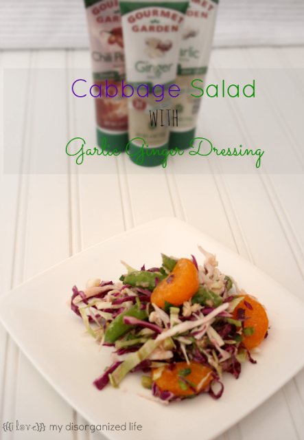 Cabbage Salad with Garlic Ginger Dressing- {i love} my disorganized life #FlavorsOfSummer #VirtualPicnic