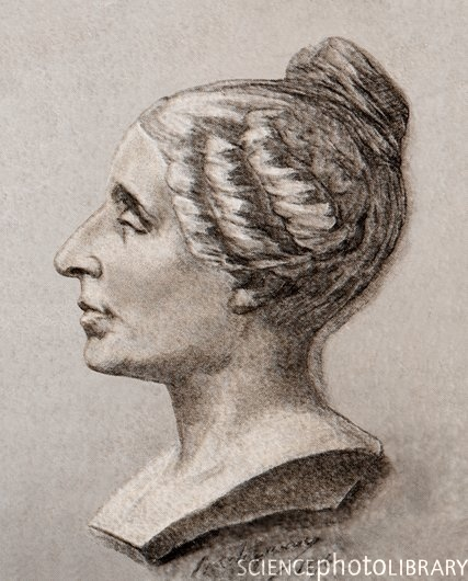 sophie germain secret mathematician Sophie germain, in full marie-sophie germain, (born april 1, 1776, paris, france —died june 27, 1831, paris), french mathematician who contributed notably to.