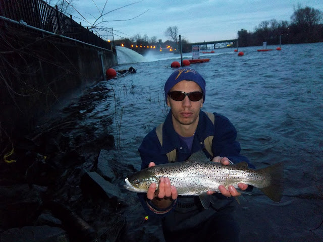 Fishing hunting in oswego county ny browns in oswego for Oswego river fishing report