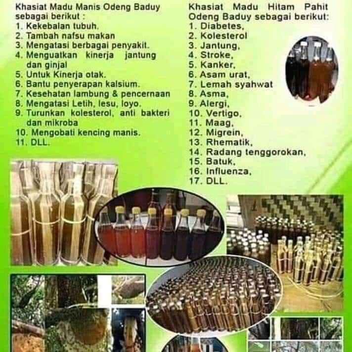 Tersedia Madu Murni