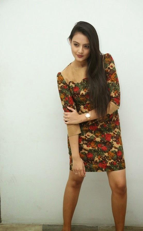 Nikitha Narayan At Love Fever Album Launch Latest Stills