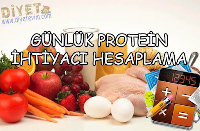 ne kadar protein
