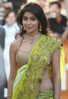 Shriya Saran Saree Hot Photos