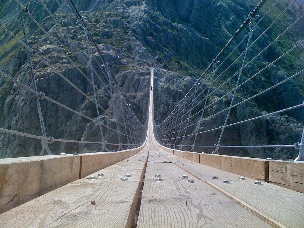 my week at bridge builders essay