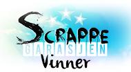 Jeg vant hos Scrappegarasjen!