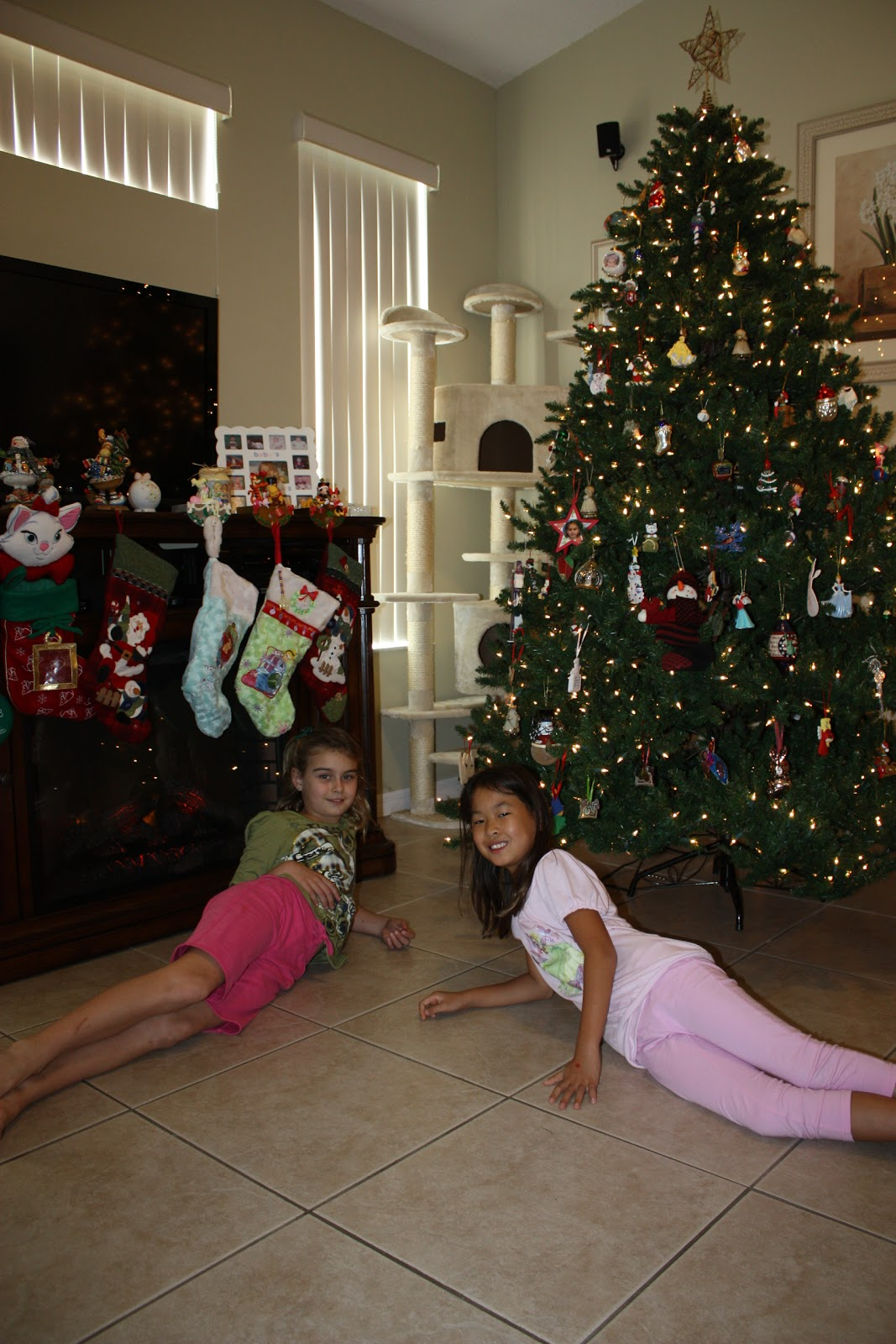 Our Family\'s Journey: Decorating the Christmas Tree on November 27th