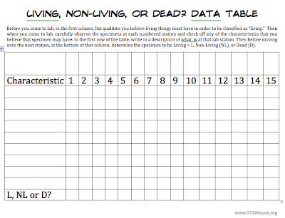 Printables Living Vs Nonliving Worksheet stem mom living non vs dead lab when deciding what to put at each of the stations i like choose some that are easily identifiable as and others more difficult