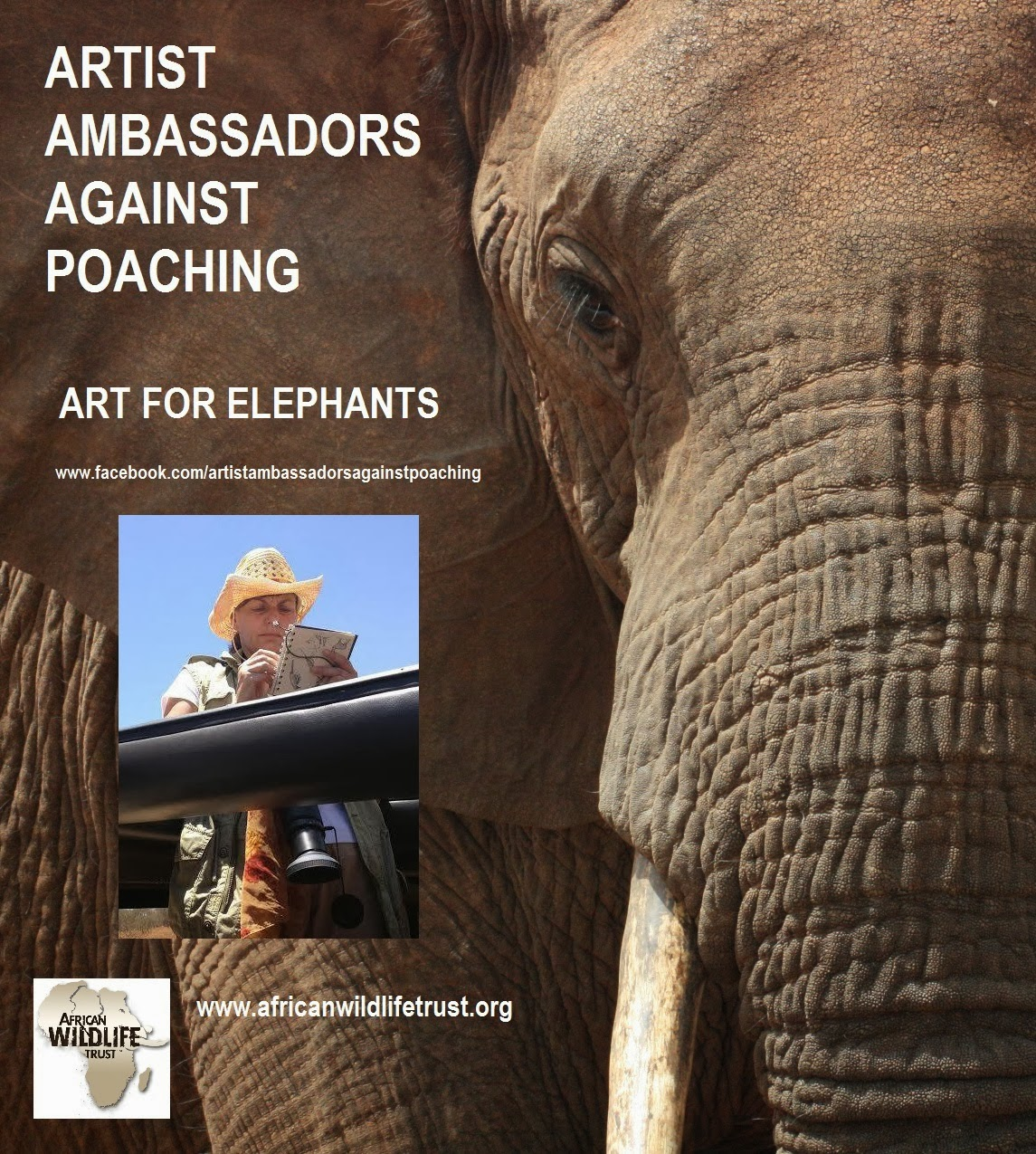 AAAP Art for Elephants