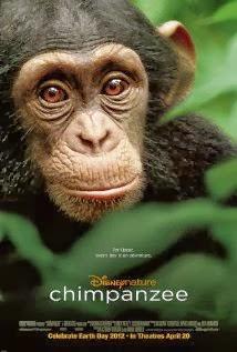Chimpanzee 2002