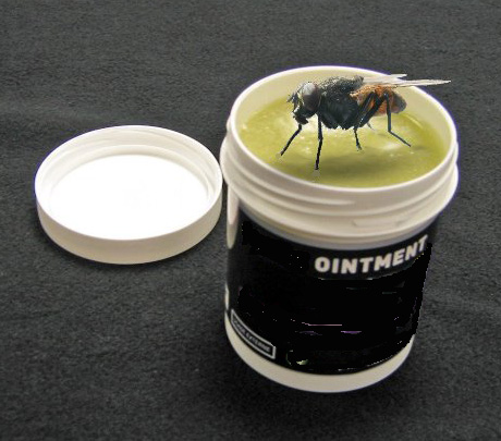 the fly in the ointment 2018-5-2  sodastream's quarter seemed outstanding there was, however, a possible fly in the ointment the fly might be a one-off, but the ointment will require further m.