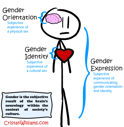 Sex and gender roles