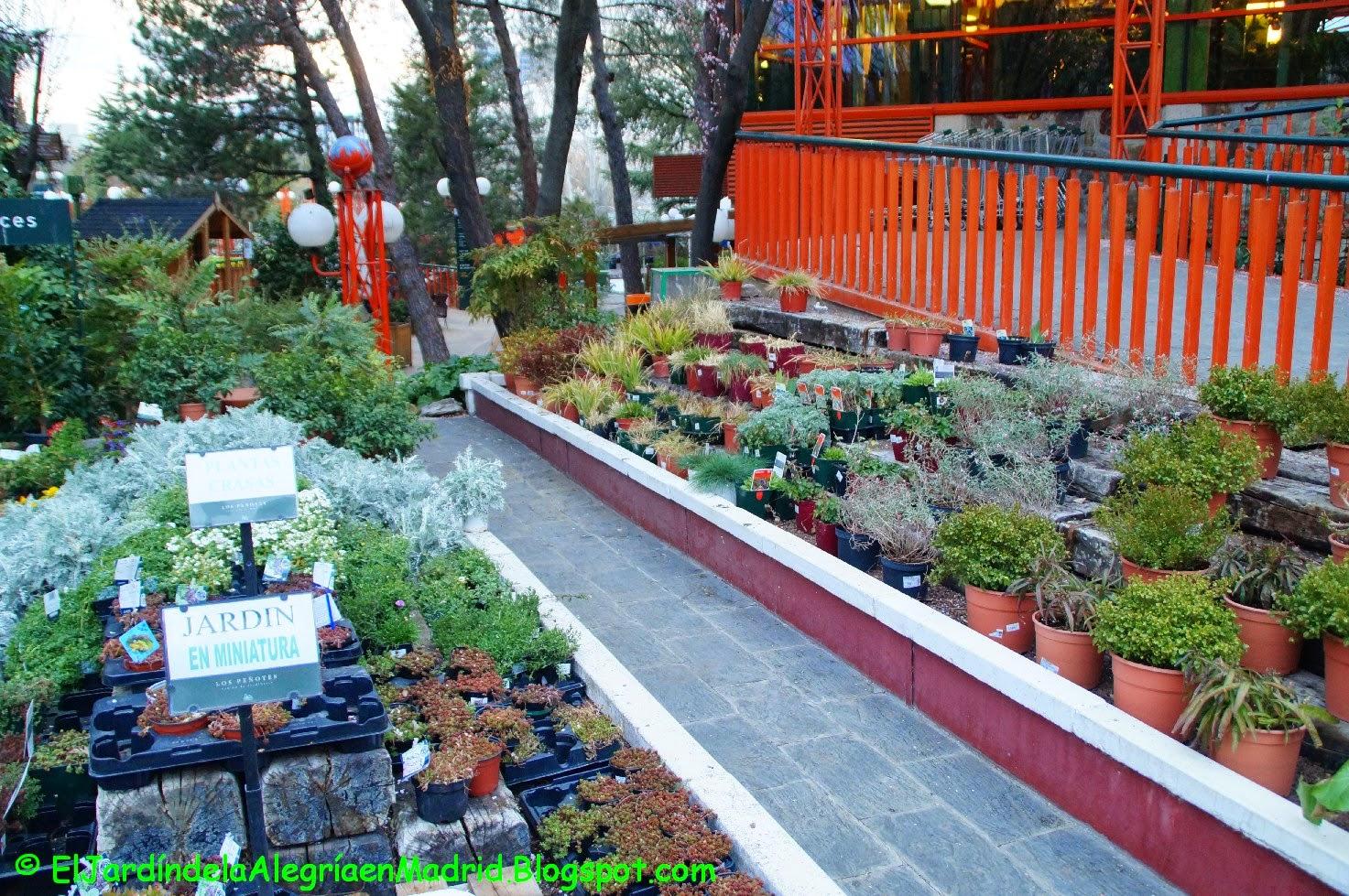 Centro de jardineria madrid elegant centro de jardinera with centro de jardineria madrid - Centro de jardineria madrid ...