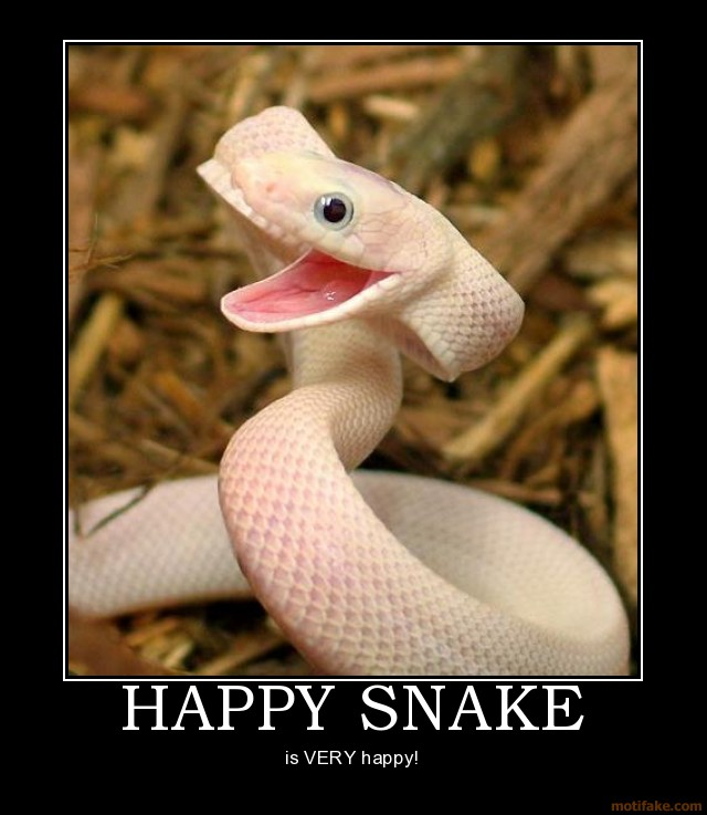 happy snake 