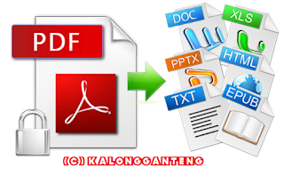 Software Convert File PDF menjadi File Office .txt dan html