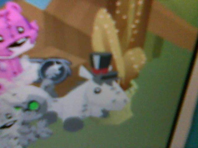 The Animal Jam Buzz My Animal Jam Horse Plushies