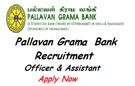pallavan gama bank, pallavan gama bank recruitment 2014, pallavan gama bank jobs opening 2014, pallavan gama bank job vacancy
