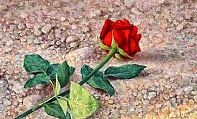 SOR JUAN INES DE LA CRUZ. A una rosa