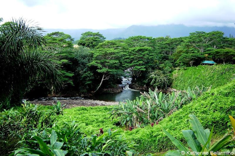 Pali Lookout Kauai's Hindu Monastery Hawaii