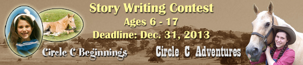 fiction writing contests 2013 Closed writer's digest's popular fiction awards is not currently accepting entries when winners are announced and other writing competitions information.