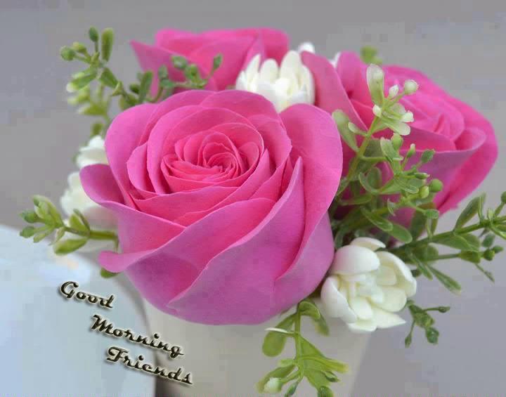 good morning friends lovely morning