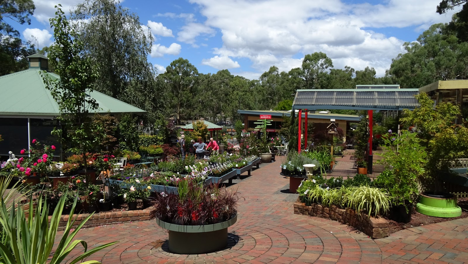 Melbourne fresh daily melbourne nurseries for Landscape design courses melbourne