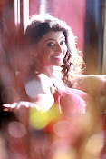 Rakshitha Glamorous Photos from Green Signal Movie-thumbnail-10